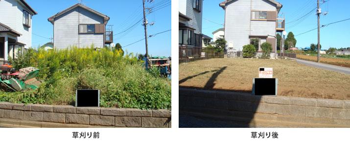 草刈り前と草刈り後